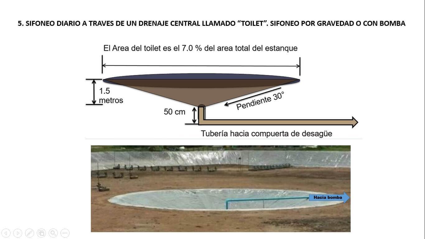Diseño del toilet para una piscina de cultivo intensivo con agua de pozo de baja salinidad.